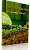Thumbnail Your Guide To The Vegan & Vegetarian Lifestyle