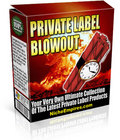 Thumbnail PLR Madness Offer - Private Label Rights eBook And Articles