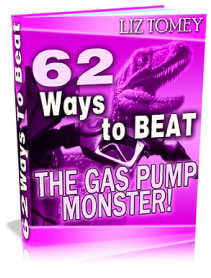 Pay for 62 Ways to BEAT The Gas Pump Monster - save money at the gas pump