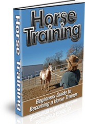 Pay for Horse Training - Beginners Guide to Becoming a Horse Trainer