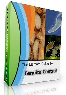 Termites in the trading system pdf