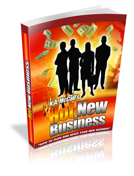 Pay for Hot New Business: How To Plan And Build Yours