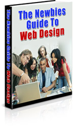 Pay for The Newbies Guide To Web Design