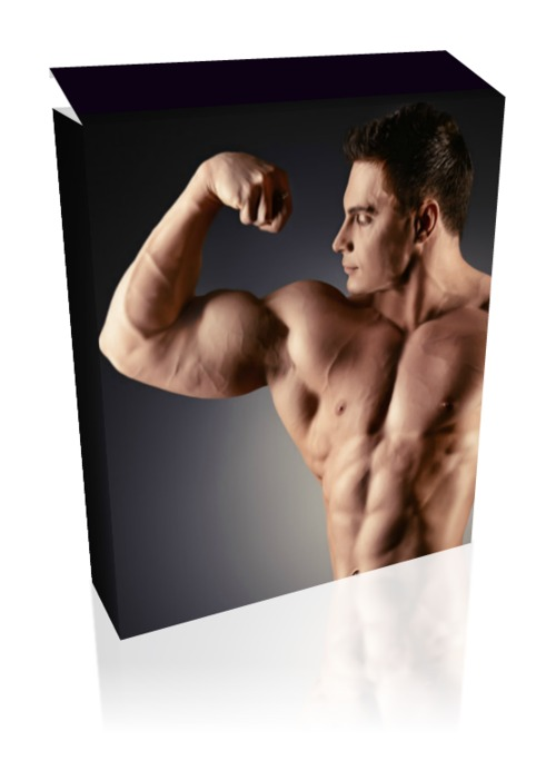 Pay for 769 PLR Fitness and Weight Loss Articles for your Blog