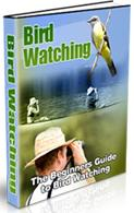Thumbnail Bird Watching  The Beginners Guide To Bird Watching  Watch Birds!