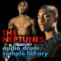 Thumbnail THE NEPTUNES Samples Hip Hop Drum Sound Loops Beats  *DL*