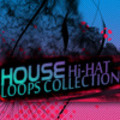 Thumbnail HOUSE Hi-HAT LOOPS Samples Hip Hop Drum Sound Loops Beats  *