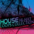 Thumbnail HOUSE Hi-HAT LOOPS Samples Hip Hop Drum Sound Loops Beats  *