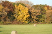 Thumbnail hay field in the fall