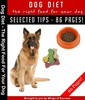 Thumbnail Right Food For Your Dog MRR E-Book + Bonus