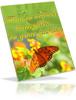 Thumbnail Attract Butterflies To Garden MRR E-Book + Website + Bonus