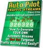 Thumbnail Auto Pilot Traffic Streams MRR E-Book + Website + Bonus