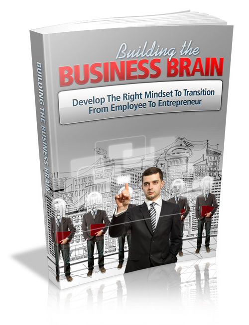 Pay for PLR Business Brain Ebook + Bonus(101 Steps To Success)