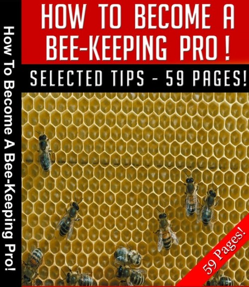 Pay for Bee Keeping Pro MRR E-Book  + Bonus