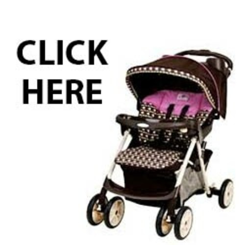 Pay for Baby Strollers Biz-in-a-box MRR + Videos + Many Bonus