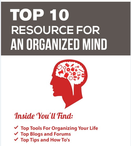 Pay for Organized Mind PLR + Bonus