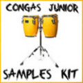 Thumbnail Congas latin percussion reason kontakt logic sf2 fl studio