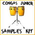 Thumbnail Congas latin percussion reason kontakt logic sf2 fl studio