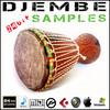 Thumbnail djembe djembes african drum percussion sample fl studio ableton live wav sounds