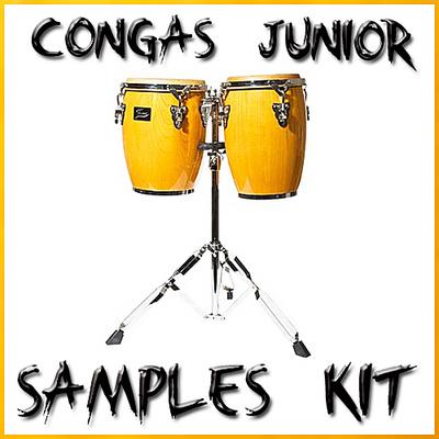 Pay for Congas latin percussion reason kontakt logic sf2 fl studio