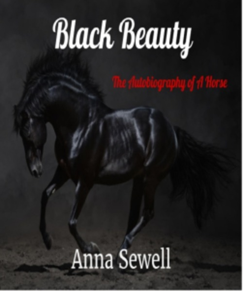 Pay for Black Beauty by Anna Sewell