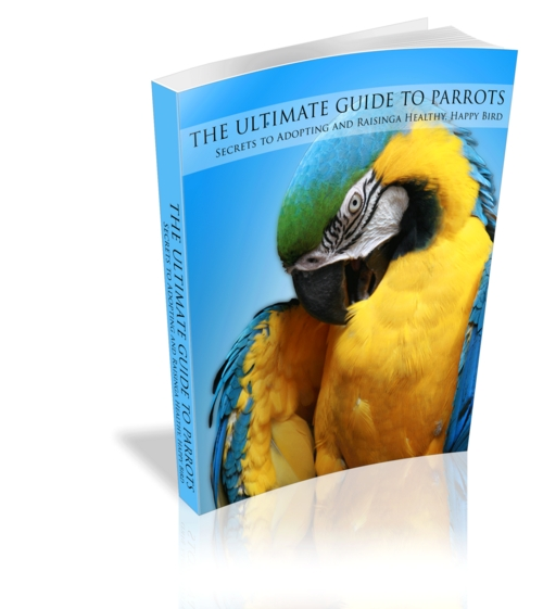 Pay for The Ultimate Guide To Parrots