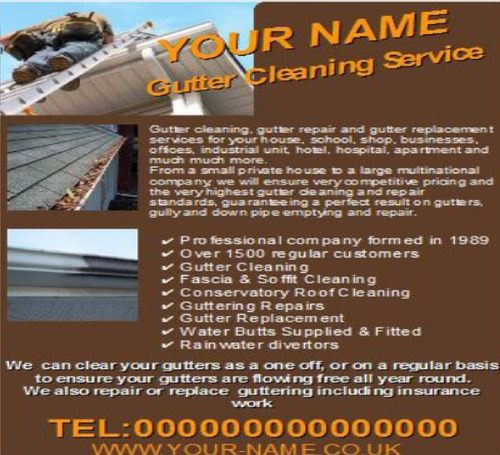 gutter cleaning business templates