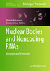 Thumbnail Nuclear Bodies and Noncoding RNAs