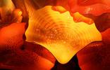 Thumbnail Google images p23