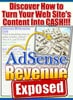 Thumbnail Adsense revenue exposed