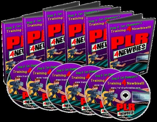 Pay for PLR for Newbies - PLR training videos for Internet Marketing