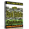 Thumbnail *NEW* How to Make Big Money with Real Estate Options ! Resale Rights Included.