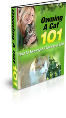 Pay for **NEW** Owning A Cat 101  With Master Resale Rights