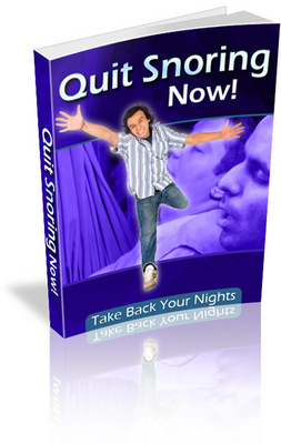 Pay for *NEW* Quit Snoring Now - Take Back Your Nights  With Master Resale Rights