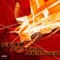 Thumbnail Euro Synths Junkiez  v2010 - Apple, Rex2