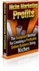 Thumbnail Niche Marketing Profits With MRR PLR