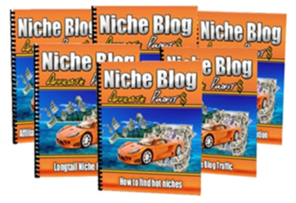 Pay for Niche Blog Affiliate Profits With PLR MRR