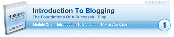Pay for *New* Blogging Workshop With PLR