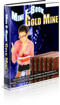 Pay for Mini EBook Gold Mine With PLR