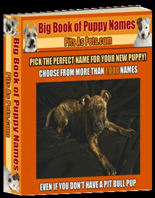 Pay for Puppy Names With PLR