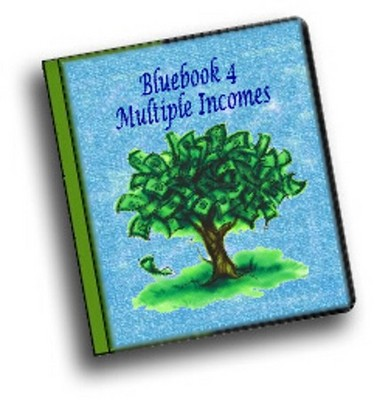 Pay for Bluebook Multiple With PLR