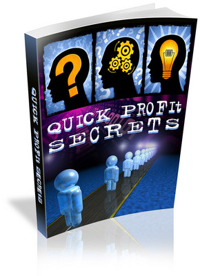 Pay for Brand New Quick Profit Secrets in 2009 With PLR