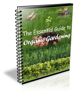 Pay for Bumper Pack of Gardening PLR- Books & Articles