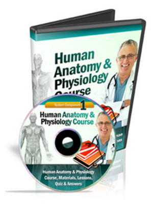 Pay for Human Anatomy & Physiology Course (Module 1)