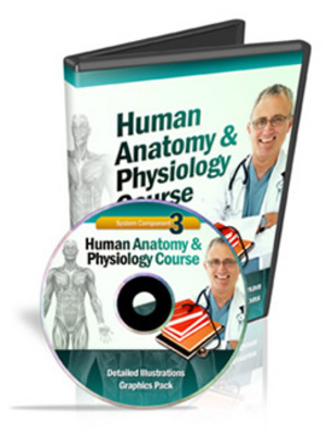 Pay for Human Anatomy & Physiology Course (Module 3)
