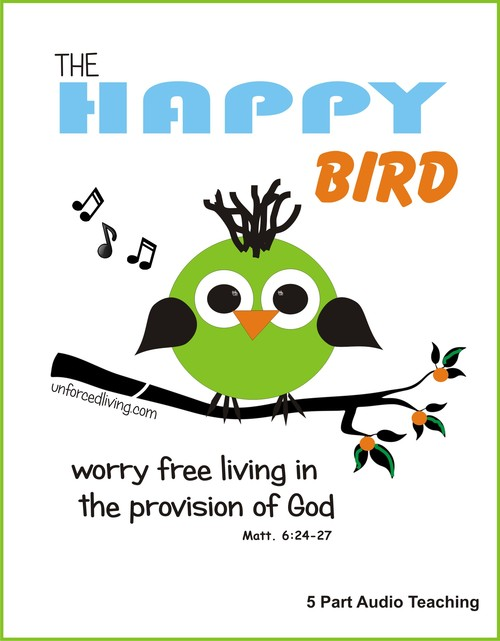 Pay for The Happy Bird Doesnt Know What Worry Is PT5