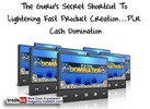 Thumbnail PLR Cash Domination PLR!