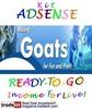 Thumbnail Adsense Kit Ready To Go - Goat Care - Personal Use!