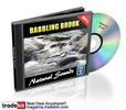 Thumbnail Babbling Brook Natural Sounds Royalty Free MRR!