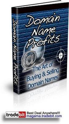 Pay for Buying and Selling Domain Names For Big Cash Profits MRR!